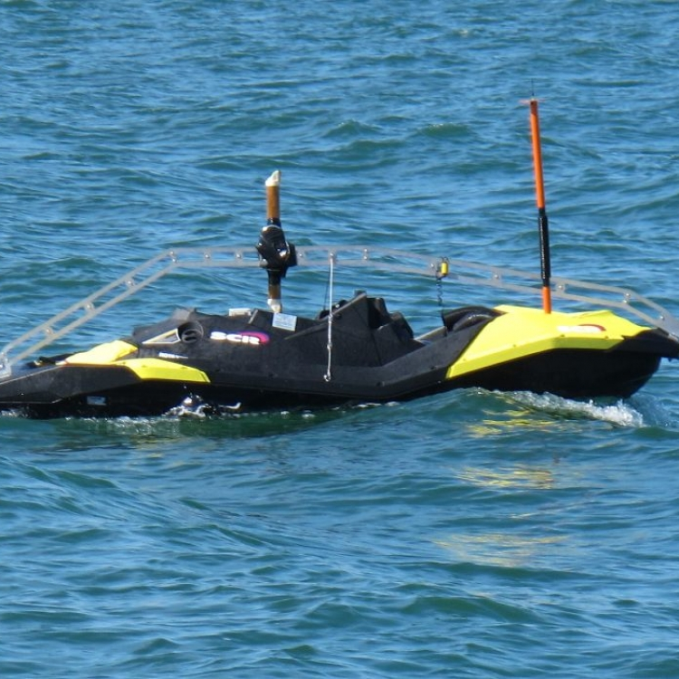 Control for Unmanned Surface Vehicles